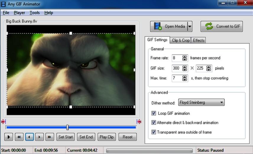 Software Any GIF Animator (TechAdvisor)